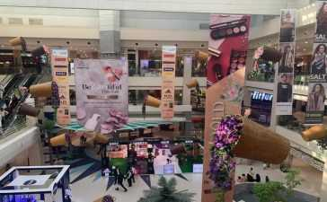 Dolmen Malls, for all Your Beauty Needs