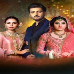 7th Sky Entertainment's Dil-e-Gumshuda Ends with Record Ratings