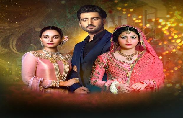 Dil-e-Gumshuda drama cast