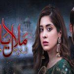Malaal e Yaar Episode-32 Review: Balaaj is falling in love with Hooriya