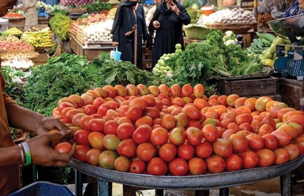 Tomato price