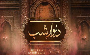 Deewar e Shab Episode-25 Review