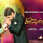 Kahin Deep Jalay Episode-13 Review: Rida and Zeeshan gets married