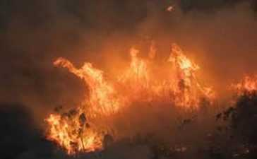Australia's Raging Bushfires