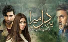 Ye Dil Mera Episode-20 Review