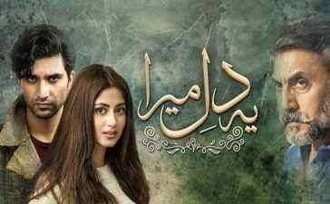 Ye Dil Mera Episode-19 Review