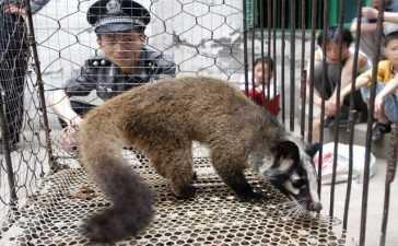 Beijing-bans-eating