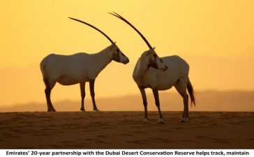 Emirates reaffirmed