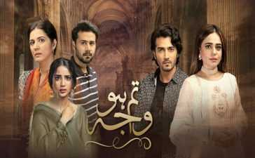 Tum Ho Wajah Episode-12 Review
