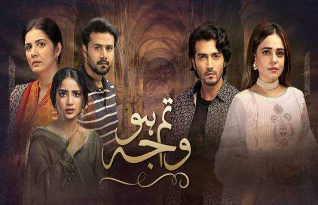 Tum Ho Wajah Ep-14 Review