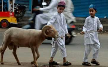 Eid-ul-Azha celebration