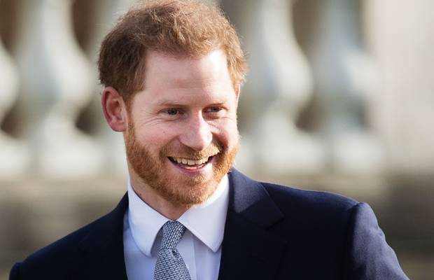 Prince Harry career in us
