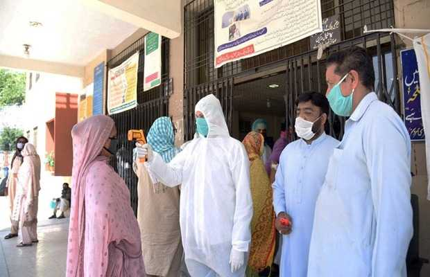 new coronavirus cases in sindh