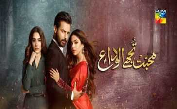 Mohabbat Tujhe Alvida Ep-9 Review