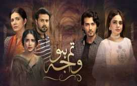 Tum Ho Wajah Ep-15 Review