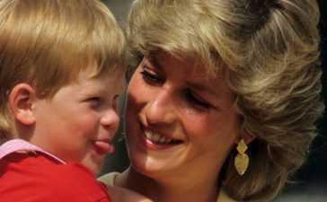Princess Diana, Lady Colin Campbell