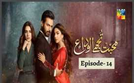 Mohabbat Tujhe Alvida Episode 14 Review