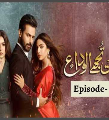 Mohabbat Tujhe Alvida Episode 14 Review
