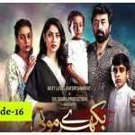 Bikhray Moti Episode-16 Review: Shezaadi becomes victim of child marriage