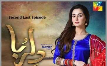 Dilruba Second Last Episode Review