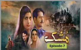Mushk Episode-7 Review