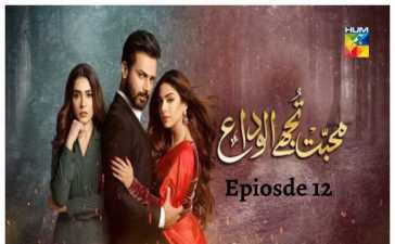 Mohabbat Tujhe Alvida Ep-12 Review