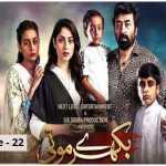 Bikhray Moti Episode-22 Review: Janu's abuser gets exposed!