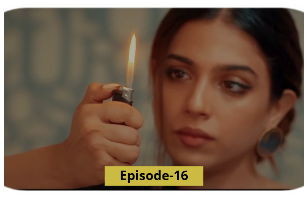 Mohabbat Tujhe Alvida Ep-16 Review: Too much drama to handle
