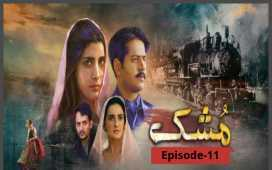 Mushk Episode-11 Review