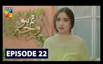 Tum Ho Wajah Episode 22 Review