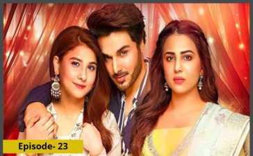 Bandhay Ek Dour Se Episode-23 Review
