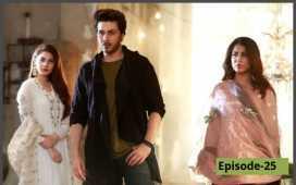 Bandhay Ek Dour Se Episode 25 Review