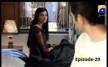 Meher Posh Episode-29 Review