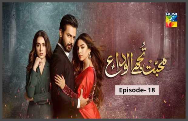 Mohabbat Tujhe Alvida Episode-18 Review