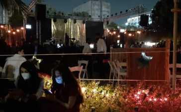 Shamoon Ismail's concert