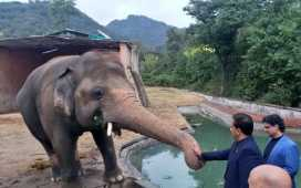 Retirement of Kaavan