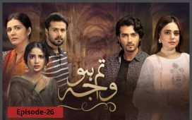 Tum Ho Wajah Episode-26 Review