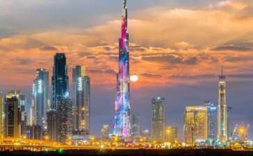 UAE halts