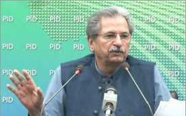 Minister for Education Shafqat Mahmood.