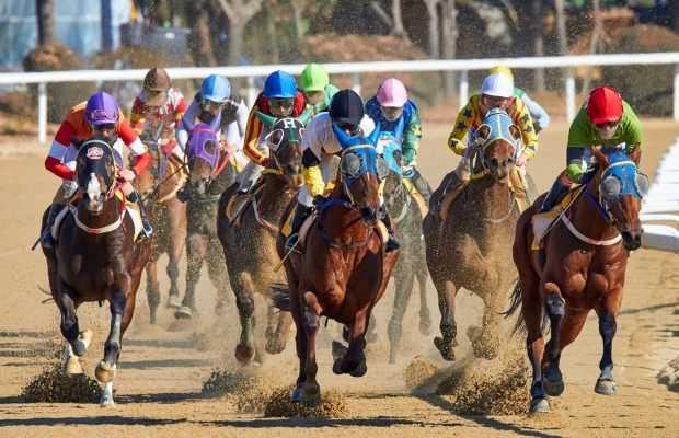 Horse Races in Pakistan