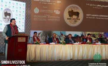 Sindh Livestock Expo 21