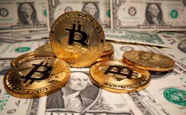 Bitcoin crashes