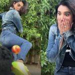 Amna Ilyas backlashed for her 'kick challenge gone wrong' video