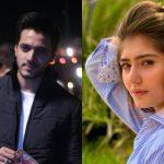 Durrefishan Saleem and Wahaj Ali are pairing up for a web series