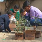 Daraz revitalizes e-commerce ecosystem with 100% recyclable packaging and tree plantations
