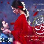 Pehli Si Muhabbat Ep-30 Review: Nadeem very efficiently convinces Aslam to marry Rakshi