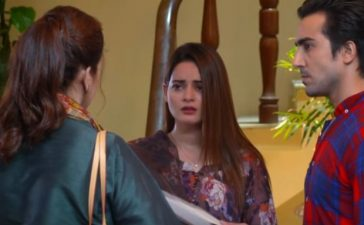 Ishq Hai Episode 31-34 Overview