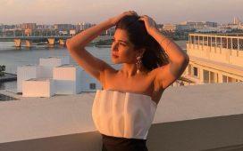 Ayesha Omar's 'privacy breach' post